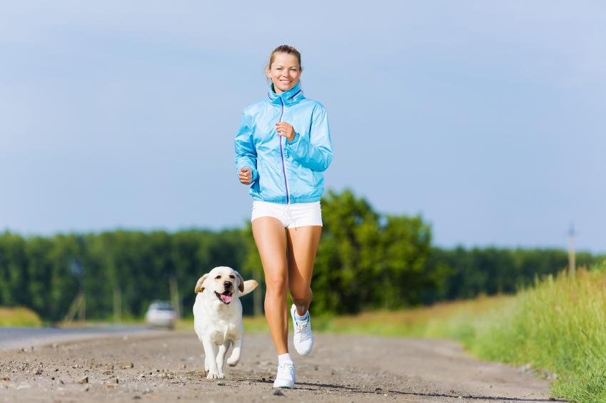 dog, exercise, health